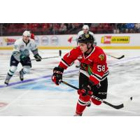 Clay Hanus of the Portland Winterhawks