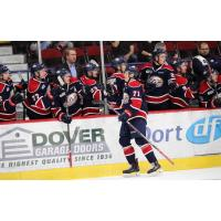 Saginaw Spirit LW Nicholas Porco celebrates a goal with the bench