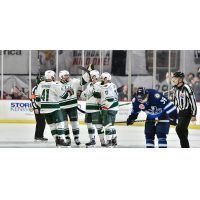 Iowa Wild celebrates a goal against the Manitoba Moose