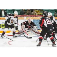 Prince George Cougars vs. the Vancouver Giants