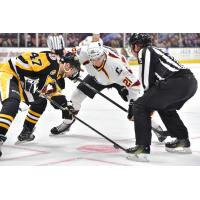 Cleveland Monsters and Wilkes-Barre/Scranton Penguins face off