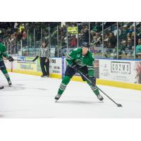 Florida Everblades forward Steven Lorentz