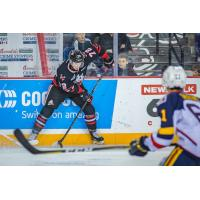 Niagara IceDogs handle the puck vs. the Barrie Colts