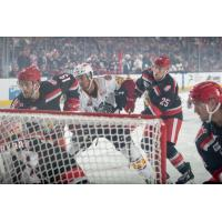 Grand Rapids Griffins attempt to fend off the Chicago Wolves