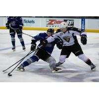 Vancouver Giants LW Owen Hardy reaches for the puck vs. the  Victoria Royals