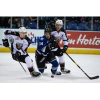 Davis Koch of the Vancouver Giants (left) vies for the puck vs. the Victoria Royals