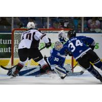 Milos Roman of the Vancouver Giants tests the Victoria Royals defense