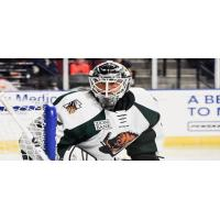 Utah Grizzlies goaltender Joe Cannata