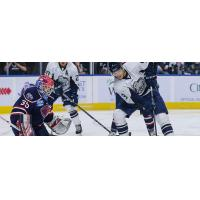South Carolina Stingrays take on the Jacksonville IceMen