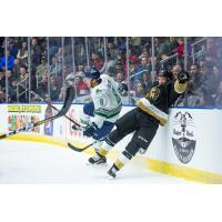 Florida Everblades defenseman Josh Wesley takes out a member of the Newfoundland Growlers