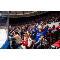Norfolk Admirals fans enjoy the game