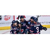South Carolina Stingrays celebrate a goal