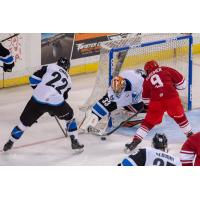 Kevin Sundher of the Allen Americans (9) pressures the Idaho Steelheads