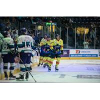 Florida Everblades take the ice in SpongeBob SquarePants uniforms