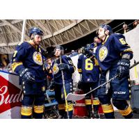 Norfolk Admirals wait to enter the ice
