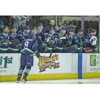 Maine Mariners forward Drew Melanson receives congratulations from his bench