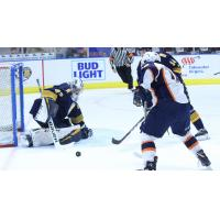 Greenville Swamp Rabbits take a shot against the Norfolk Admirals