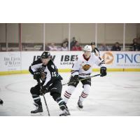 Ryan Walters of the Utah Grizzlies (15) takes on the Indy Fuel