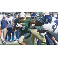 RB Kalif Phillips with UNC Charlotte
