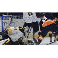 Greenville Swamp Rabbits forward Jordan Sims tries to get past the Norfolk Admirals goaltender