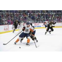 Flint Firebirds vs. the Sarnia Sting in the School Day Game