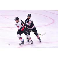 Adirondack Thunder forward Shane Conacher vs. the Brampton Beast