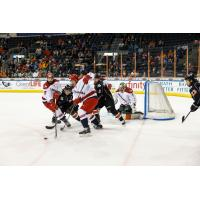 Allen Americans battle the Kansas City Mavericks