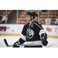 Manchester Monarchs captain David Kolomatis