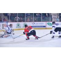Cullen Bradshaw of the Adirondack Thunder Skates in against the Reading Royals
