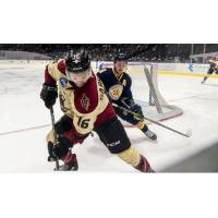 Norfolk Admirals vs. the Atlanta Gladiators