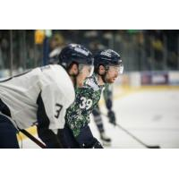 Florida Everblades forward Joe Cox (39)