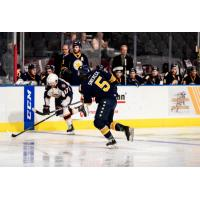 Norfolk Admirals vs. the Greenville Swamp Rabbits