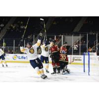 Norfolk Admirals celebrate a goal against the Atlanta Gladiators