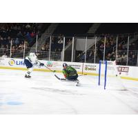 Florida Everblades score on the Atlanta Gladiators