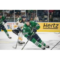 Florida Everblades forward Kyle Platzer skates against the Norfolk Admirals