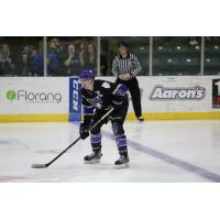 Ronnie Attard of the Tri-City Storm