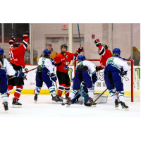 Metropolitan Riveters celebrate a goal against the Connecticut Whale