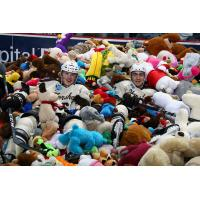 Hershey Bears in a sea of teddy bears
