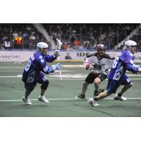Rochester Knighthawks F Cody Jamieson vs. the Calgary Roughnecks