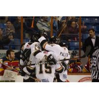 Fayetteville Marksmen celebrate a goal against the Peoria Rivermen