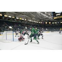 Florida Everblades forward Steven Lorentz (16) navigates past the South Carolina Stingrays defense