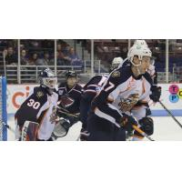 Greenville Swamp Rabbits defend their goal against the South Carolina Stingrays