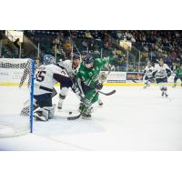 Florida Everblades forward Joe Cox eyes a goal against the Jacksonville IceMen