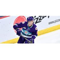 Orlando Solar Bears defenseman Mike Monfredo