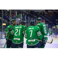 Florida Everblades huddle