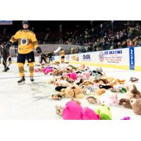 Teddy Bears litter the ice during the Norfolk Admirals' Teddy Bear Toss