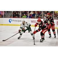 Grand Rapids Griffins defense keeps the Iowa Wild at bay