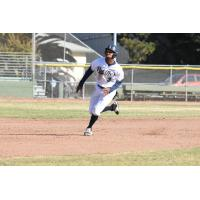 San Rafael Pacifics right fielder Javion Randle rounds the bases