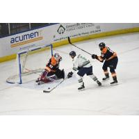 Derek Sheppard of the Florida Everblades readies a shot against the Greenville Swamp Rabbits