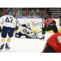 Norfolk Admirals goaltender Ty Reichenbach vs. the Cincinnati Cyclones